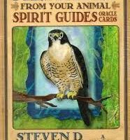 Messages-from-your-animal-Spirit-Guides-oracles-Cards